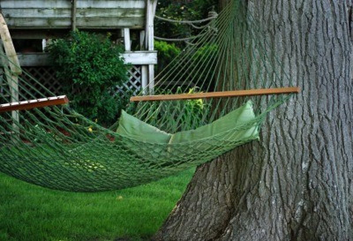 sandy springs tree services avoid costly sandy springs tree services by hanging a hammock      rh   atlanta tree removal